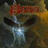 No. 11 'Thunderbolt' de Saxon (Silver Lining)