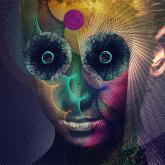 No. 16 'The Insulated World' de Dir En Grey (Firewall)