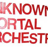 """Unknown Mortal Orchestra """"'Bicycle"""""""