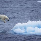 Si todo el hielo del planeta se derritiera