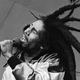 """""""Emancípense de la esclavitud mental, nadie salvo ustedes pueden liberar su mente"""" (Redemption Song)"""