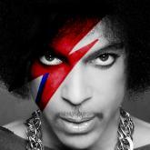 Prince fue encontrado sin vida el 21 de abril en su residencia en Minnesota