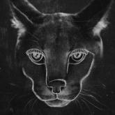 Así se ve el nuevo álbum de Disclosure