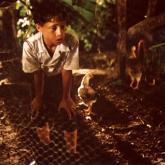 Los niños Invisibles (2001) Lizandro Duque Naranjo