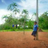 La selva inflada (2016) de Alejandro Naranjo