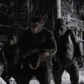 'El Planeta de los Simios: La Guerra' estrena tráiler