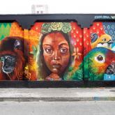 Pereirano llevará la batuta del grafiti colombiano en el Meeting of Styles