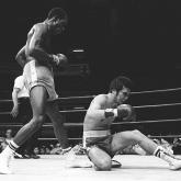Apuntes sobre el boxeo colombiano