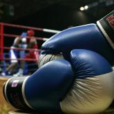 Boxeo colombiano: Al borde del nocaut