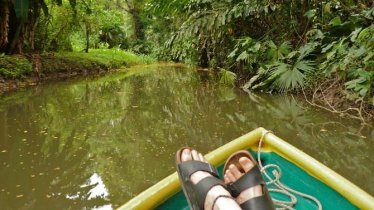 Ecoturismo: ¿Cómo reducir las huellas de carbono mientras viajas?