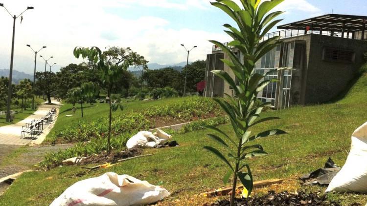 Sembramos en Medellín y ya viene el Radiónica Sound System