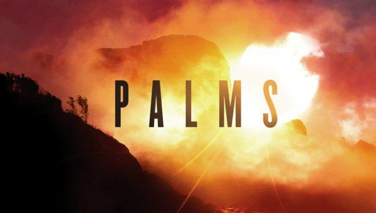 Radiónica Recomienda: Palms