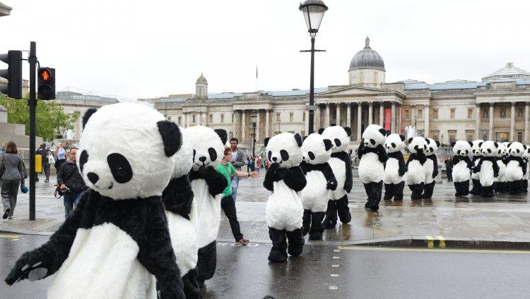 Invasión de pandas en Londres