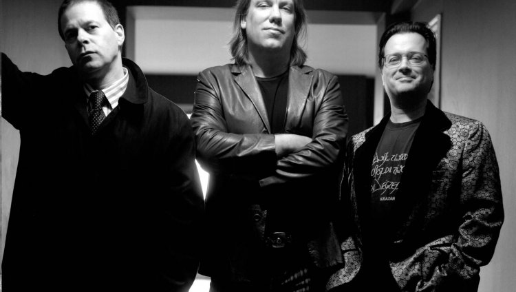 La banda fue formada por Brian Ritchie y Victor DeLorenzo en 1980 y complementaron con Gordon Gano.