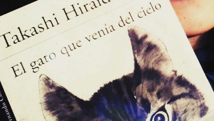 """""""El gato que venía del cielo"""" de Takashi Hiraide"""
