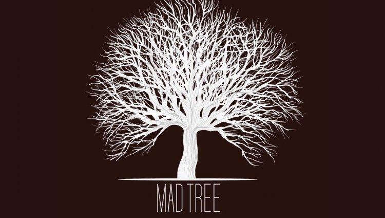 Valeria Romero de Mad Tree (parte 1)