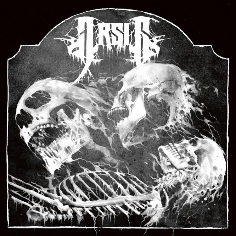 No. 17 'Visitant' de Arsis (Agonia)