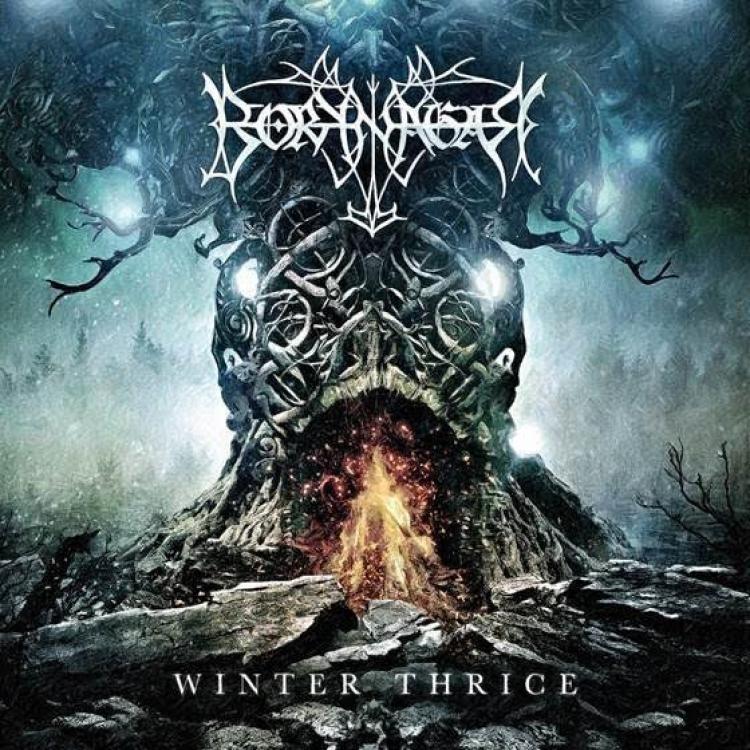 No. 15 'Winter Thrice' de Borknagar (Century Media)