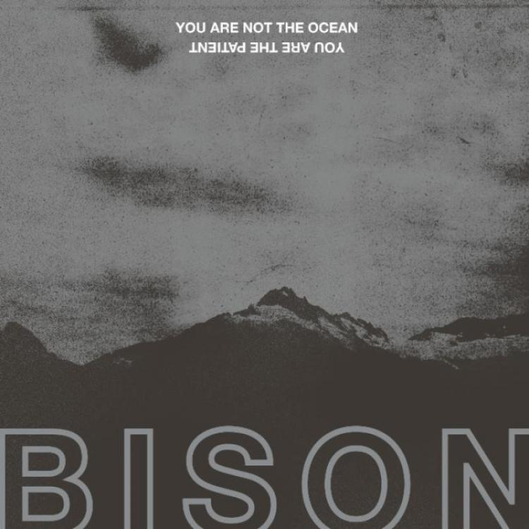 No. 18 'You Are Not The Ocean You Are The Patient' de Bison B.C (Pelagic)