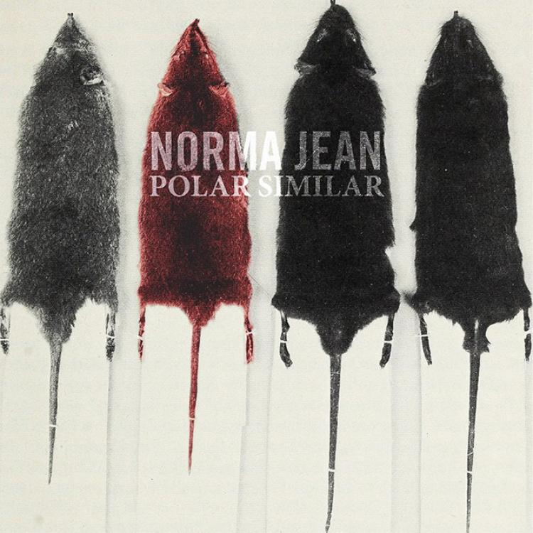 No. 45 'Polar Similar' de Norma Jean (Solid state)