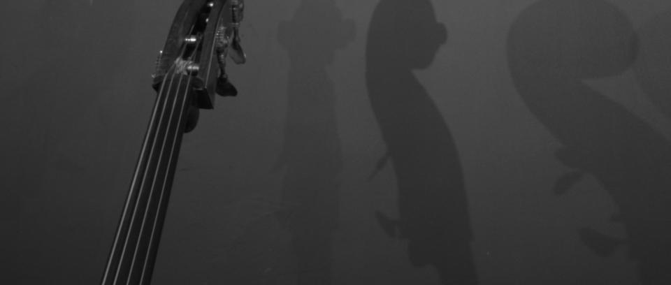 En escala de grises: FatsO en el ensayadero