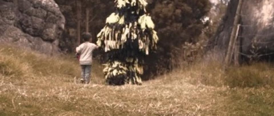 'Sombra': nuevo vídeo de Revólver Plateado
