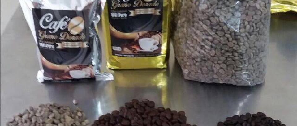 En el Catatumbo, la paz se construye con aroma a café