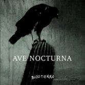 Ave Nocturna